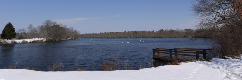 Main pond, Connetquot River State Park Preserve, Suffolk County, New York
