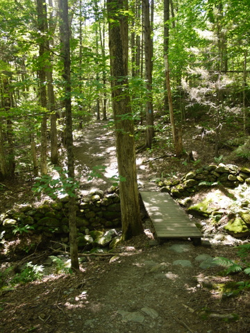 Small bridge on the Monroe Trail, Camel's Hump State Park, Chittenden & Washington Counties, Vermont