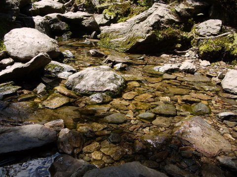 Rocks in streambed, Camel's Hump State Park, Chittenden & Washington Counties, Vermont