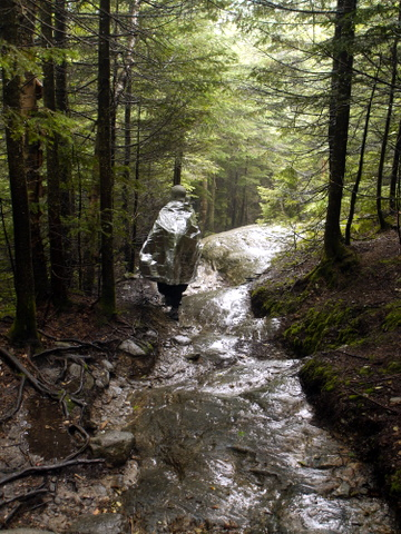 Hiking slowly on wet rock, Camel's Hump State Park, Chittenden & Washington Counties, Vermont