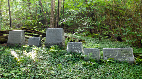 Tombstones, Camel's Hump State Park, Chittenden & Washington Counties, Vermont