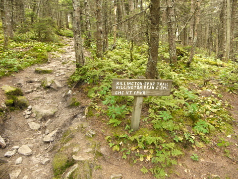Signpost, Killington Peak, Rutland County, Vermont