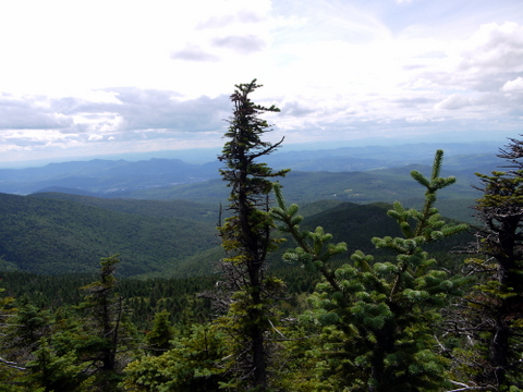 Scenery from Killington Spur Trail, Killington Peak, Rutland County, Vermont