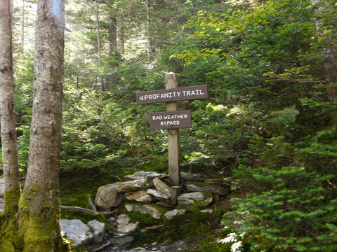 Bottom of the Profanity Trail, Mt. Mansfield, Chittenden County, Vermont