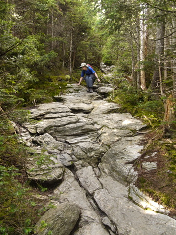 Scrambling down the Long Trail, Mt. Mansfield, Chittenden County, Vermont