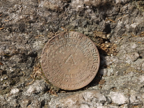 Survey marker at summit of Laraway Mountain, Long Trail State Forest, Lamoille County, Vermont