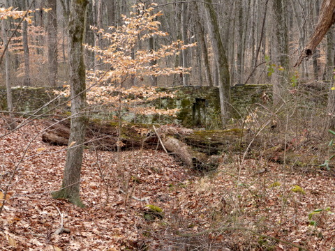Old wall, Sourland Mountain Preserve, Somerset County, New Jersey