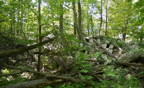Rocky outcrop, Allamuchy Mountain State Park, Sussex County, New Jersey