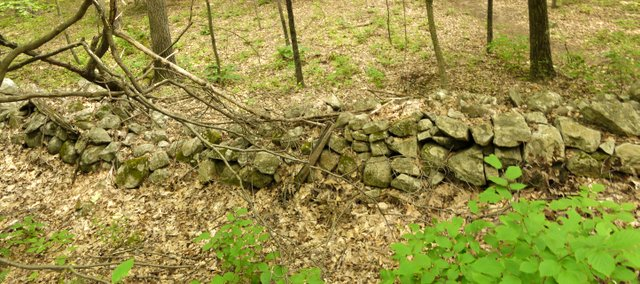 Rock wall, Sterling Forest State Park, Orange County, New York