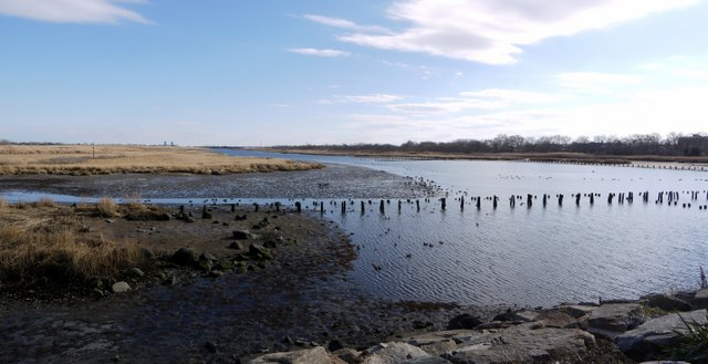Gerritsen Creek, Marine Park, Brooklyn (Kings County), New York