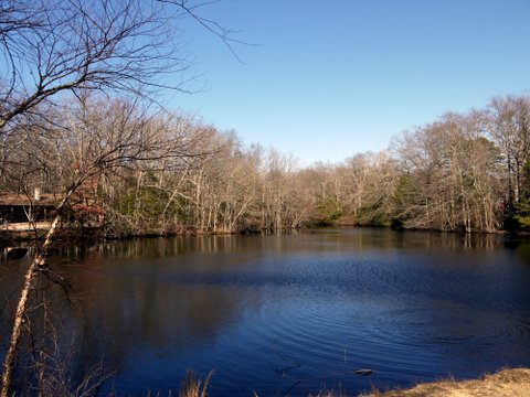 Pond, Allaire State Park, Monmouth County, New Jersey