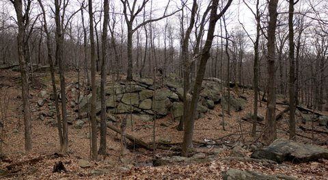 Rock wall, Ramapo Mountain State Park, Bergen & Passaic Counties, New Jersey