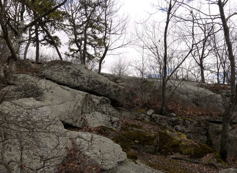 Exposed rock, Ramapo Mountain State Park, Bergen & Passaic Counties, New Jersey