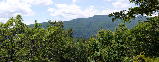 Kaaterskill High Peak and Round Top, Kaaterskill Wild Forest, Greene County, New York