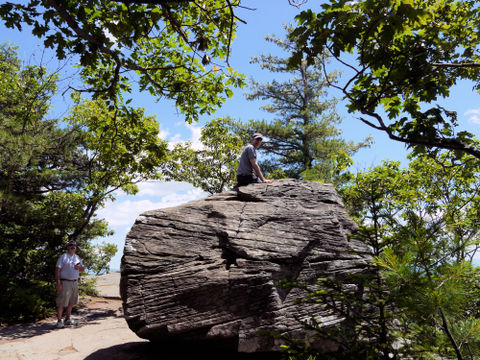 Charlie on top of Boulder Rock, Kaaterskill Wild Forest, Greene County, New York
