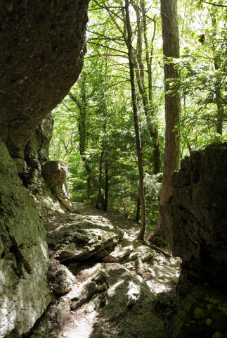 Rock wall, Kaaterskill Wild Forest, Greene County, New York