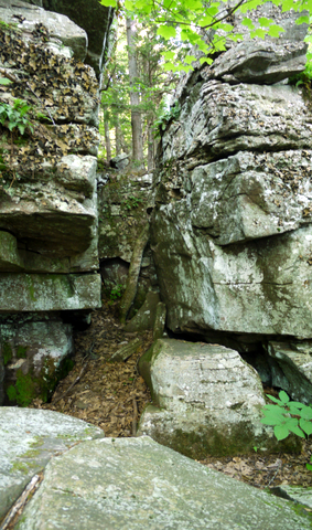 Break in rock wall, Kaaterskill Wild Forest, Greene County, New York