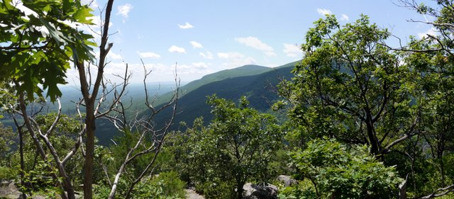 View from Huckleberry Point, Kaaterskill Wild Forest, Greene County, New York