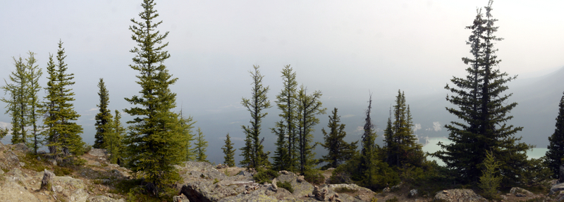 Panoramic view from Little Beehive, Banff National Park, Alberta, Canada