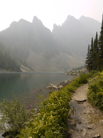 Trail on northern side of Lake Agnes, Banff National Park, Alberta, Canada