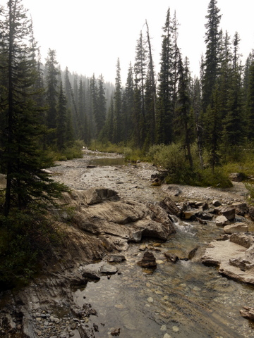 Sunshine Creek, Banff National Park, Alberta, Canada
