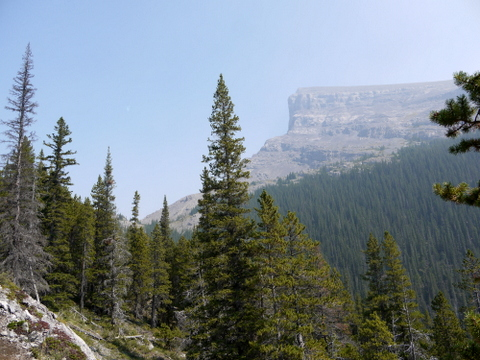 View from West Wind Pass Trail, Bow Valley Wildland Park, Alberta, Canada